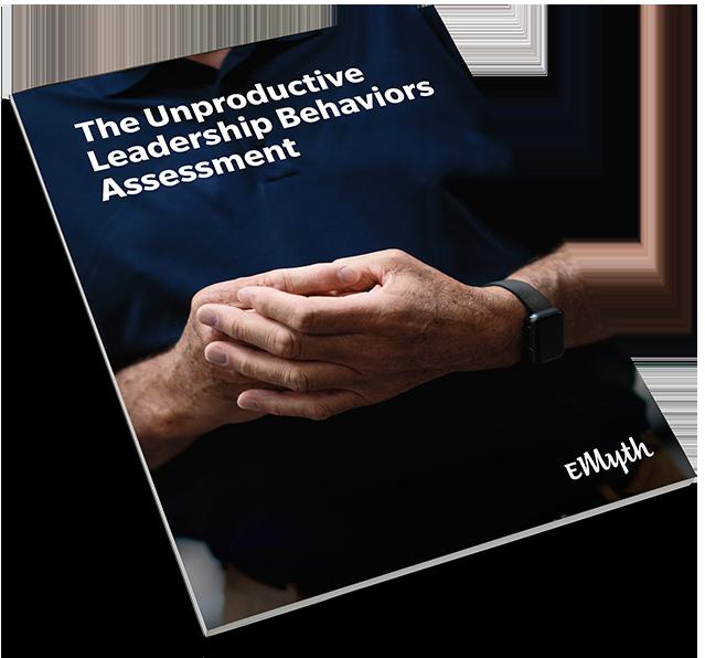 e-myth-business-coaching-business-owner-leadership-behavior